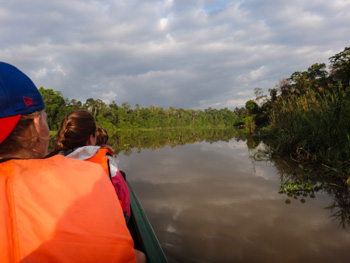 One of the 21 oxbill lakes on the Sungai Kinabatangan